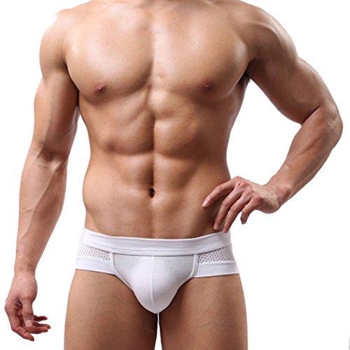 TIFIY Herren Solid Bulge Beutel Weiche Mesh Unterwäsche Man Hipster Boxer Briefs Shorts Unterhose (L, Weiß) (12 Briefs Mens Boxer)
