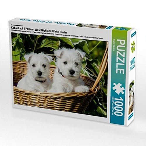 Ein Motiv aus dem Kalender Kobold auf 4 Pfoten - West Highland White Terrier 1000 Teile Puzzle quer