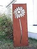 Garten Sichtschutz aus Metall Rost Gartenzaun Gartendeko edelrost Sichtschutzwand PF0019 125*35*2CM