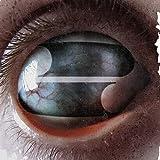 Songtexte von Filter - Crazy Eyes