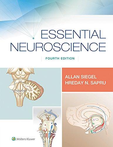 Essential Neuroscience (English Edition)