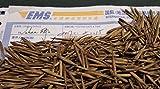 Phyllostachys pubescens MOSO Bambus 1000 Samen. Direktimport aus China. Februar 2017