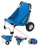 Boardbuggy Ascan Transportwagen Beachbuggy Transporthilfe + Sitz