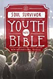 NIV Soul Survivor Youth Bible Hardback (New...