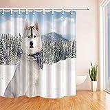 cdhbh Safari Vorhänge Dusche für Badezimmer wildanimal Wolf sitzt auf Schnee gegen Kiefer Nadeln und Berge Polyester Stoff wasserdicht Bad Vorhang Vorhang für die Dusche Haken enthalten 180,3x 180,3cm