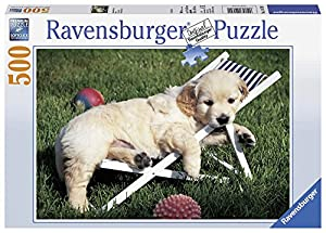 Ravensburger - Puzzle 500 Piezas, Golden Retriever (14179)