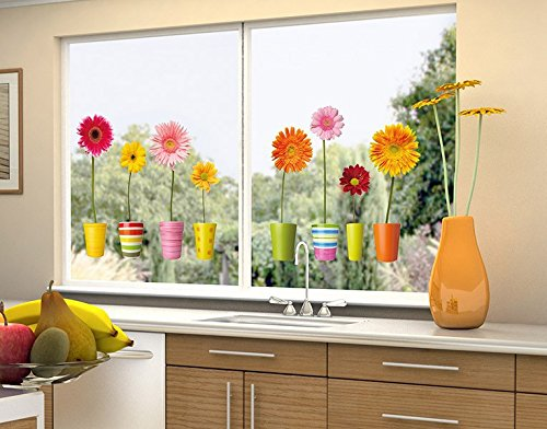 Klebefieber Fenstersticker Gerberatöpfe B x H: 40cm x 18cm
