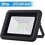Faro Led Esterno 30W Luce Bianco Freddo 6500K Ultra-Luminoso 2550LM Lampada Faretto Slim da Giardino Illuminazione di Sicurezza Faretti Risparmio Energetico Basso Consumo Impermeabile IP65 (30)