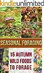 Seasonal Foraging: 15 Autumn Wild Foo...