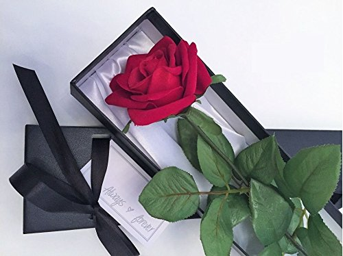 -single-stem-red-valentine-rose-in-a-silk-lined-black-presentation-gift-box-including-always-forever