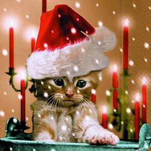 20 Servietten Sleepy Cat – Verträumte Katze/Winter / Weihnachten 33x33cm