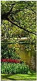 Türtapete Türposter Bunte Blumen im Park am Wasser - Frühblüher am Ufer - Größe 93 x 205 cm