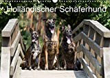 Holländischer Schäferhund (Wandkalender 2020 DIN A3 quer) - Fotodesign Verena Scholze