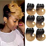 6 PCS Bob Ombre Two Tone Human Hair Weaves Black to Honey Blonde Short Body Wave Brazilian Virgin Human Hair Extension Weft,25g/pc (#1B/27)