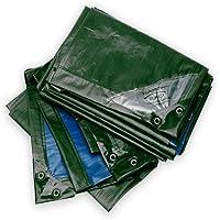 Rainexo telone estremamente resistente, verde/blu, 4x6m
