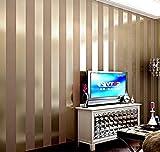 LFNRR hoher Qualität einfach und modern Vliestapeten Schlafzimmer Wohnzimmer Sofa TV Hintergrund Wand solid gold silber schwarz und Weiß horizontal gestreifte Tapete Meter lang und 9,5 Meter breit und 0,53 m, 11084