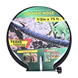 Best Soaker Hoses - Taisia Soaker Hose 75 ft with 1/2'' Diameter Review
