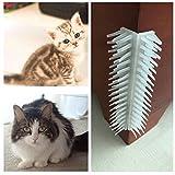iBaste Pet self Grooming massaggio spazzola con Catnip Cat Kitten massaggiatore massaggio pettine a parete prurito New Tool Cat Picard Toys - aiuta a prevenire e controlli shedding-safe & confortevole