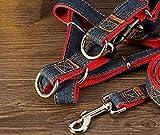 PRIMI Cowboy Pet Hund Seil Hundeleine Seil Hunde Leine für Pet Supplies (M)