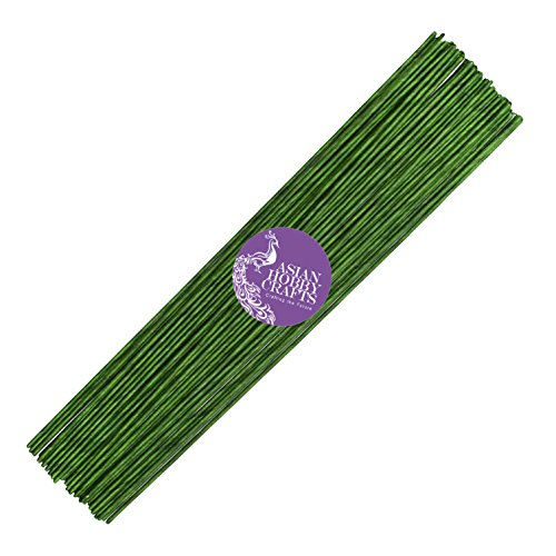 Asian Hobby Crafts Flower Making Wire, Green (25 Pieces)