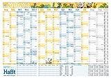 Häfft Wandkalender Schuljahr 2017/2018 89x63cm (größer als A1), gefalzt, Schuljahreskalender 14 Monate Aug 2017 - Sep 2018, 2 Stundenpläne, Ferientermine, mit Extra A4-Übersicht