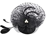 Fascigirl Veil Fascinator Women Bridal Wedding Flower Feather Hair Clip Pillbox Hat