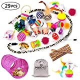 HODESU 29Pcs Cat Toys Kitten Toys Assortments, Cat Tunnel Feather Teaser Wand Fish Fluffy Mouse Mice Balls and Bells Toys for Cat Puppy Kitty with Storage Bag