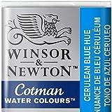 BIC Cotman Marqueur Velleda 1701 Et 1 751 Pointe Ogive Tracé 2 mm Effaãable Encre Base Alcool Corps Plastique Inodore, Vert, 1,9x1,6x1,1 cm