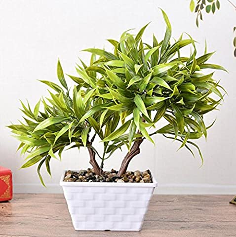 KQS-XYT Antarctic Potted Bamboo Leaves v - Shaped Two -