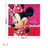 Disney Minnie Maus Leinwand Bilder (PPD1453O5FW)