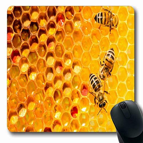Luancrop Mousepads für Computer Goldgelbe Bienenstock-Nahaufnahme-Bienen auf Bienenwaben-Bienenhaus-Honig-selektivem Natur-Kamm-Muster-rutschfesten länglichen Spiel-Mausunterlage