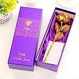 skyworld 24K Gold Rose with Beautiful Gift Box (Gold, 1 Piece,30 x 10 x 8 cm)