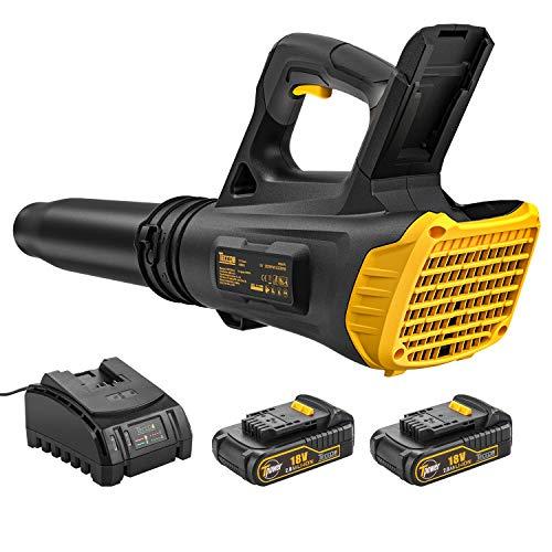 TECCPO Soplador de Hojas con Batería, 2 Baterías de 18V 2.0Ah, Ventilador Axial, Interruptor de 2...