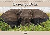 Okavango Delta - Fernweh Botswana (Tischkalender 2018 DIN A5 quer): Eine Reise durch die Xakanaxa-Region im wundervollen Okavango Delta in Botswana (Monatskalender, 14 Seiten ) (CALVENDO Orte)