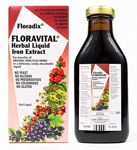 Preisvergleich Produktbild Floradix Floravital Yeast And Gluten Fr 500ml