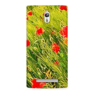 Delighted Beauty Flowers Farm Back Case Cover for Oppo Find 7