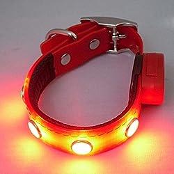 BXT® Colliers Animalerie Sécurité Lumineux Clignotant Nuit LED TPU Nylon Imperméablepour Chien et Chats Couleur Rouge (Taille- XL )