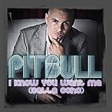 I Know You Want Me (Calle Ocho) (Radio Edit)