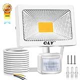 CLY 30W LED Strahler mit Bewegungsmelder,[Warmweiß] LED Scheinwerfer 2700LM IP66 Wasserdicht, Außenstrahler Superhelle, LED Fluter Sensorleuchten für Garten, Hinterhof, Garage, Türen