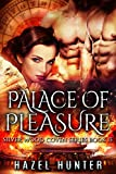 Palace of Pleasure (Book 13 of Silver Wood Coven): A Serial Paranormal Romance