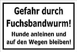 Schild - Vorsicht - Fuchs-bandwurm - Hund anleinen - 30x20cm mit Bohrlöchern | stabile 3mm starke PVC Hartschaumplatte – S00359-094-A +++ in 20 Varianten erhältlich