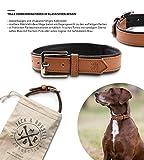 Jack & Russell Premium Leder Hunde Halsband Lilly - Leder Halsband Zwei Farben gesteppt - echtes Leder div. Farben Hudehalsband Lilly (L, Braun/Schwarz)