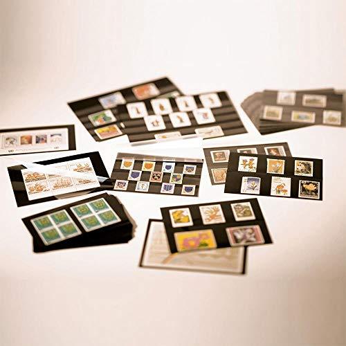 Prophila Collection 100 Leuchtturm A5-Einsteckkarten Steckkarten mit Schutzfolie NEU