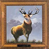 Songtexte von Killdozer - Twelve Point Buck