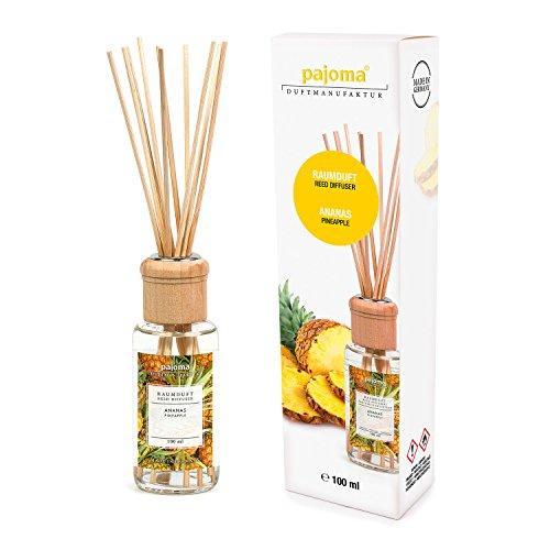 pajoma Raumduft Ananas Modern Line, 1er Pack (1 x 100 ml) in Geschenkverpackung -