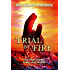 TRIAL BY FIRE:  An End-Times Prophecy Thriller (Christian Fiction) (The Omega Series Book 2)