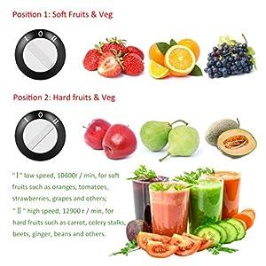 OZAVO Centrifuga Frutta e Verdura, Estrattore di Succo, Centrifuga Motore, Contenitore e Spazzola per Succo più Nutriente, Funzione Anti-Intasamenti, Acciaio Inox - 2021 -