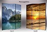 Lupia separè doppelseitig Rahmen 3Türen Trennwand mit kunstvollen Kunstdruck auf Leinwand Landschaft, Holz, Mehrfarbig, 176x 3,2x 135.6cm