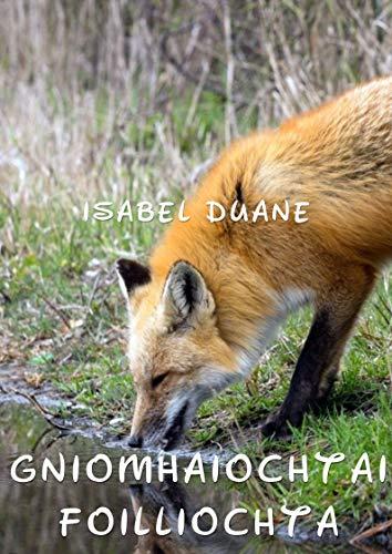 Gníomhaíochtaí fóillíochta (Irish Edition) por Isabel Duane