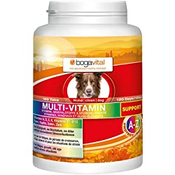 bogavital Multi Vitamin Support Hund, 1er Pack (1 x 180 gr)
